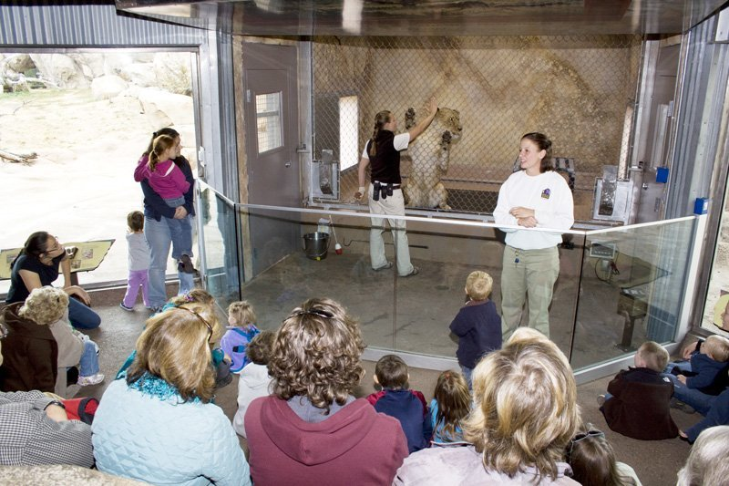 Balancing Act: Achieving Harmony Between Nature and Science at Zoos and Aquariums