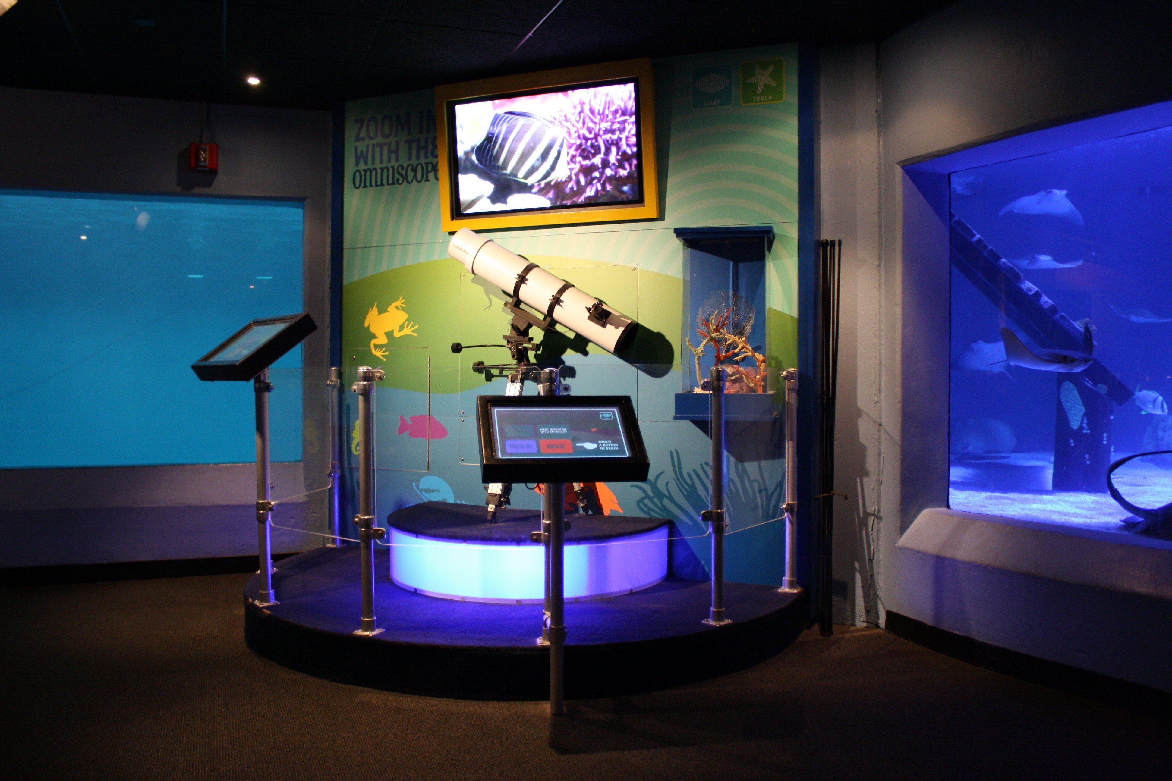 Aquarium Exhibit Sound, Lighting and Special Effects – How Guests Benefit from Innovation
