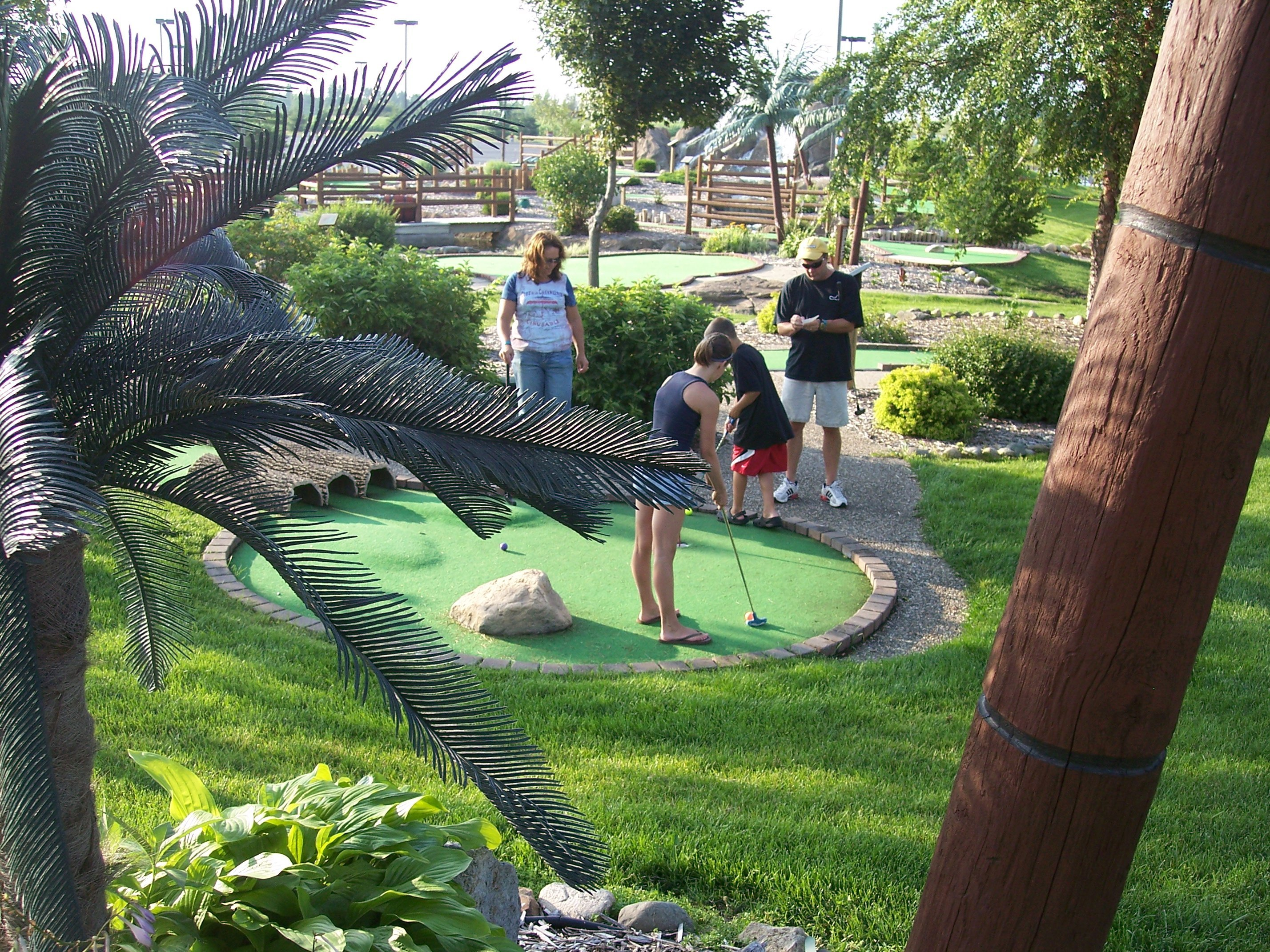 The Mini-Golf Industry<br>  Cutting Edge Trends in Putting
