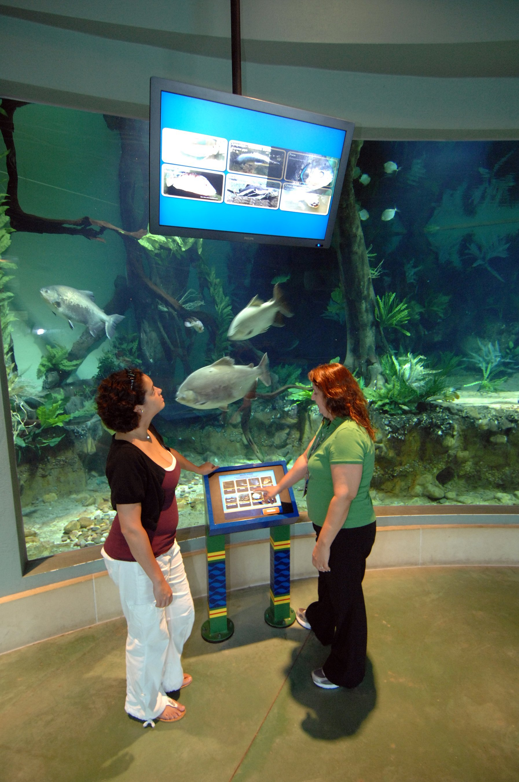 The Magic of High Technology: <br>How Lighting and Sound Immerse Visitors to Zoo and Aquarium Exhibits