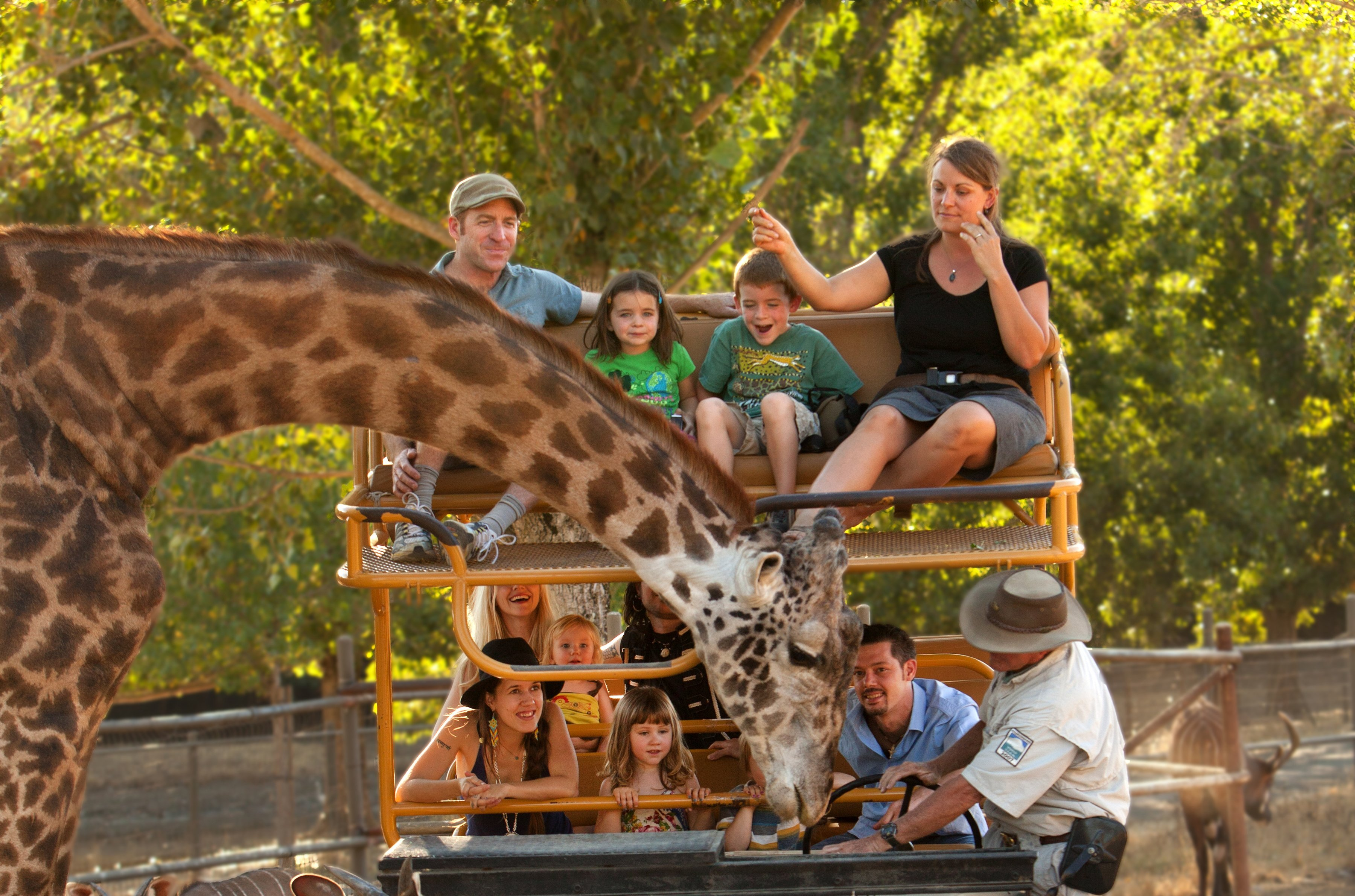 Food for the Ages<br/>Strategies from Zoos and Botanical Gardens to Satisfy All Guests