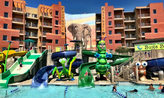 Fun for All Ages: Splash Parks, Spray Grounds, and Wet and Dry Play