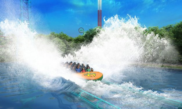 What's In Store for Thrills and More <br>A 2020 Roller Coaster Preview