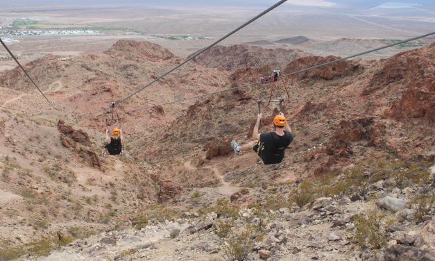 Zipping into Fun: Trends in the  Zip Line Industry
