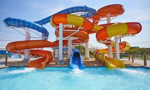 Swimming Sensations<br>  What's Fun and New at Waterparks