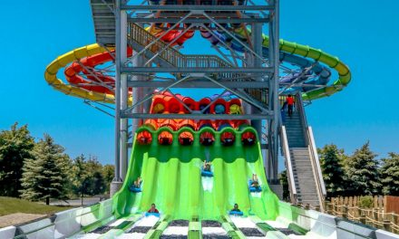 Water Park Report:<br>Trends for the Summer Season